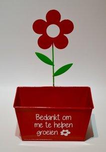 Rood bloempotje
